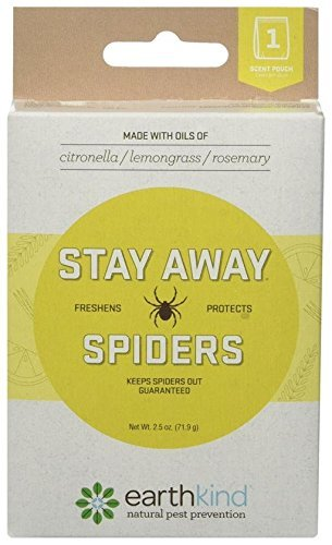 Herbal spider repellent