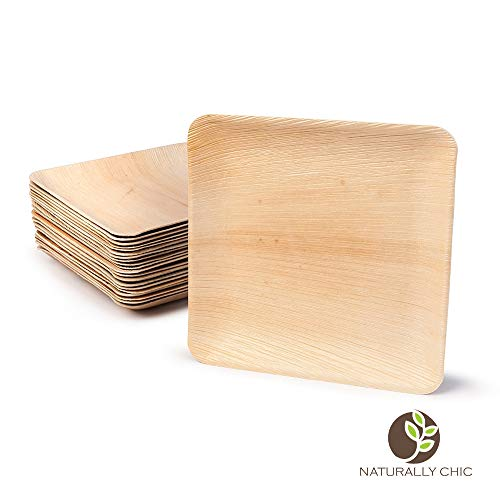 (Naturally Chic Palm Leaf Compostable Plates | 10