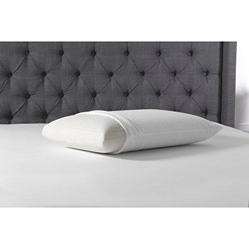 Beautyrest Soft Pillow (Simmons Beautyrest Beautyrest Latex Foam Pillow with Cover King)