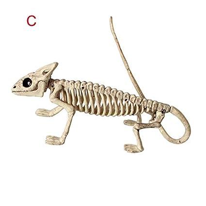 Accessoires Os De Lezard Halloween Party Decoration Symboat Animal Squelette Modele Chauve Souris Grenouille Jeux Et Jouets Hotelaomori Co Jp