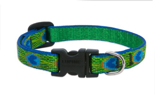 """LupinePet Originals 1/2"""" Tail Feathers 8-12"""" Adjustable Collar for Small Dogs"""