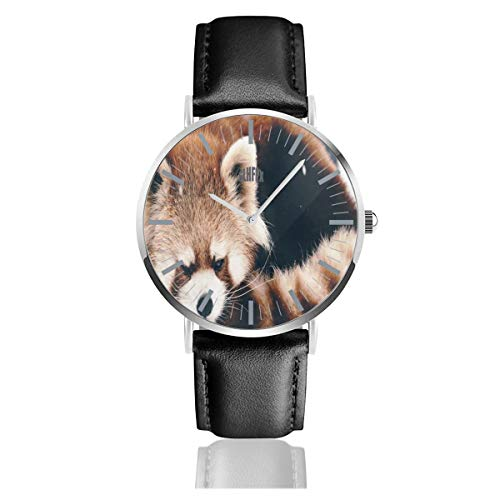 (Animals Red Panda Snow Big Face Watch for Men, Water Resistance Wrist Watches in Leather Band Stainless Steel Quartz Watch for Women Girls Boys 38mm/1.5