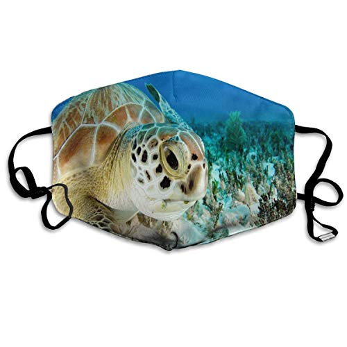 Dust Mask Turtle Sea Coral Fashion Anti-dust Reusable Cotton Comfy Breathable Safety Mouth Masks Half Face Mask for Women Man Running Cycling Outdoor