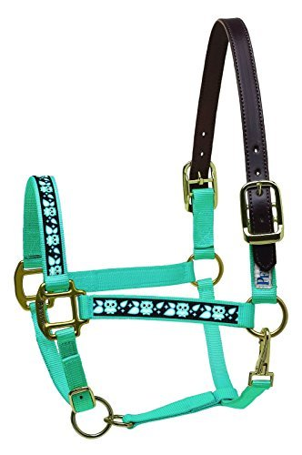 Ribbon Safety Halter Horse (Perri's Leather Mini A Turquoise with Owls Nylon Ribbon Safety Halter)