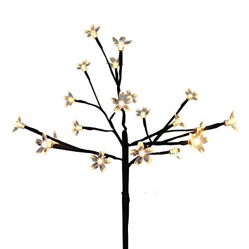 White Led Cherry Lights