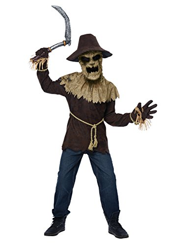 California Costumes Wicked Scarecrow Costume, Medium, Brown ()