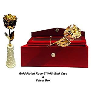 Own Care 24k Gold Dipped 6'INCH Real Rose with Designer Bud Vase Gift for Your Love one.