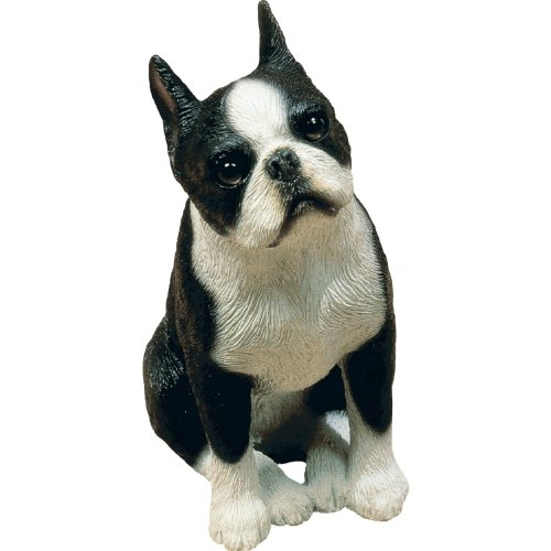 Figurine Terrier (Sandicast Mid Size Boston Terrier Sculpture, Sitting)
