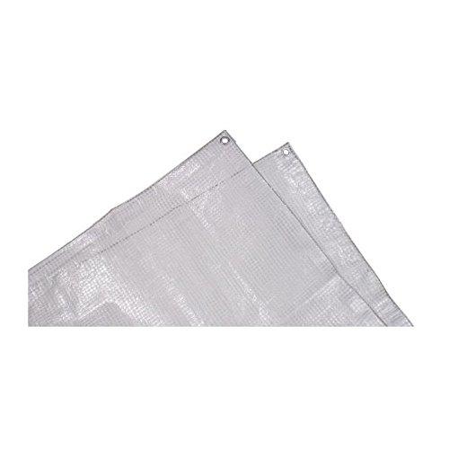 TECHIT Bâche armée transparente lourde 140g/m² - 4 x 5m TECH-IT 3349358874053
