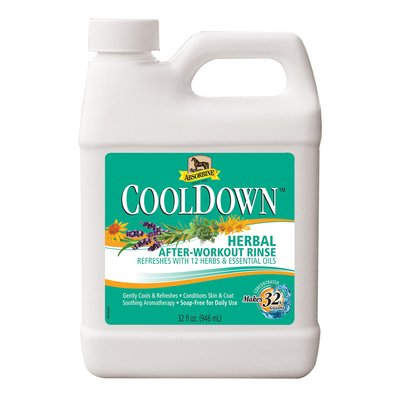 CoolDown Herbal After-Workout Rinse - 32oz by W F Young Inc