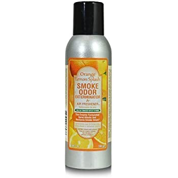 Amazon.com: Smoke Odor Exterminator AX-AY-ABHI-27443 7 Oz ...