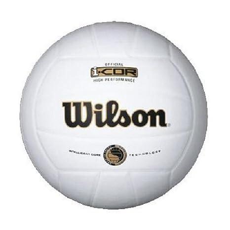 Wilson I Cor Mini Indoor Balón de Voleibol: Amazon.es: Deportes y ...