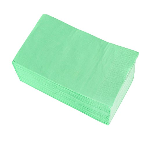 Paper Napkins - 120-Pack Disposable Dinner Napkins, 2-Ply Absorbent Napkins for Everyday Kitchen, Dining, Events, Parties, Mint Green, 15.5 x 13 Inches