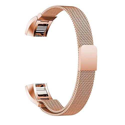 Maledan Replacement Stainless Milanese Bracelet