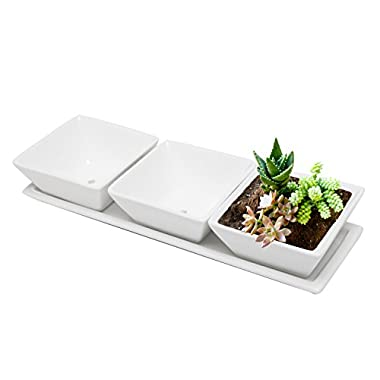 Set of 3 Decorative Modern White Square Flower, Succulent Planters / Dishes with Display Tray