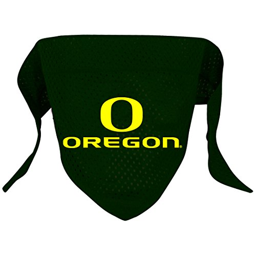 NCAA Oregon Ducks Pet Bandana, Team Color, Small