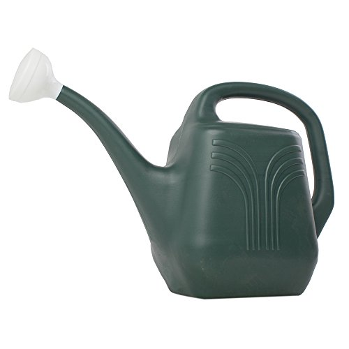 2 Gallon Watering Can (Set of 12) Color: Midsummer Night by Bloem