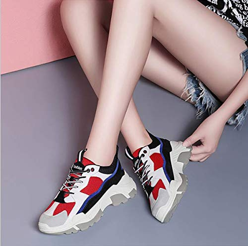 GTVERNH Womens Shoes//Korean Version Fashionable Womens Shoes Daddys Shoes Autumn and Winter Sports Shoes Gules Thirty-Six