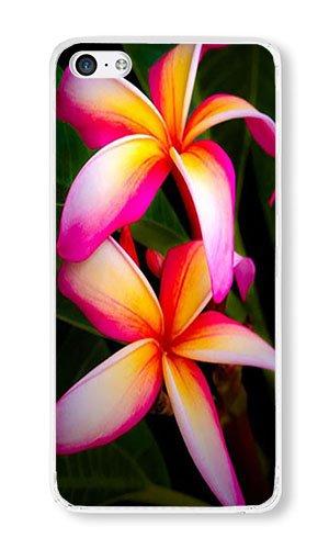 Amazon iphone 5c case aoffly plumeria flowers pink orange iphone 5c case aoffly plumeria flowers pink orange bright hawaii clear pc hard case for apple mightylinksfo