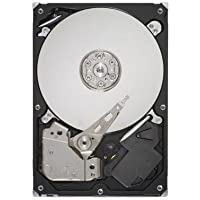 SEAGATE TECHNOLOGY, Seagate Barracuda 7200.12 ST31000524AS 1 TB Internal Hard Drive (Catalog Category: Computer Technology / Storage Components)