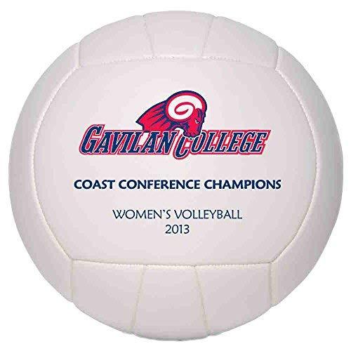 Personalized Custom Photo Regulation Full Size Volleyball - Any Image - Any Text - Any Logo