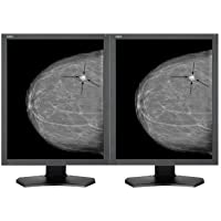 NEC MultiSync - LCD monitor - 5MP - grayscale - 21.3 (21.3 viewable) - 2048 x 2560 - 1100 cd/m� - 850:1 - 18 ms - DVI-D
