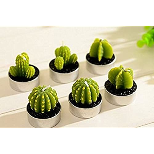 wisdomtoy 6 piece mini lovely green meat plant cactus romantic candle - Decorating Cactus For Christmas