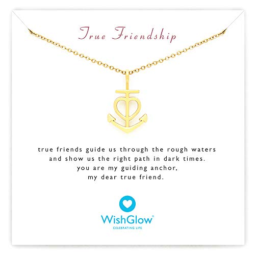 (WishGlow True Friendship Love Anchor Gift Necklace, The Perfect Meaningful Gift for Friends (Birthdays, Holidays, Special Occasions), 18