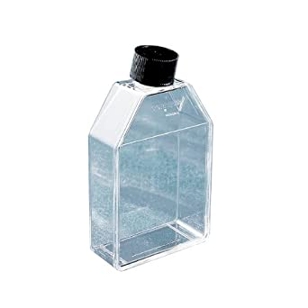 Corning 430372 Polystyrene 10mL Rectangular Canted Neck Cell Culture Flask with Black Phenolic-Style HDPE Cap (Case of 500)