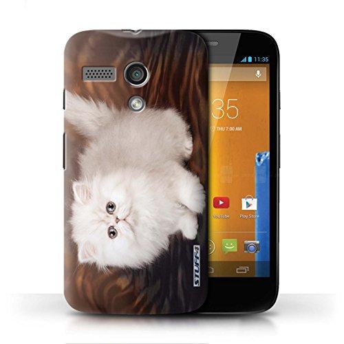 Etui / Coque pour Motorola MOTO G (2013) / Blanc et moelleux conception / Collection de Chatons mignons