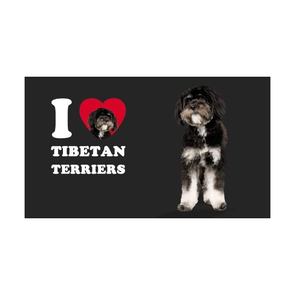 Tree-Free Greetings CC35133 I Heart Tibetan Terriers Artful Traveler Double-Walled Cool Cup with Reusable Straw, 16-Ounce, Black and White 3