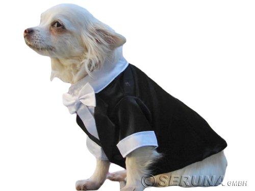 anzug für hunde