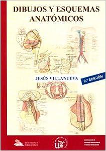 Como Descargar Libros Dibujos Y Esquemas Anatómicos Fariña Epub