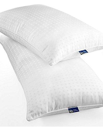 serta-perfect-sleeper-300t-standard-queen-memoryfil-pillow-20-x-28