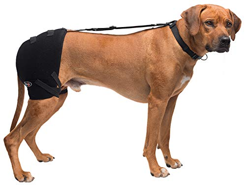 CALDERA Large Hip Pet Therapy Wrap - Specially Designed For Canine Hip's Anatomy (Includes Reusable Therapy Gel Pack, Size ()