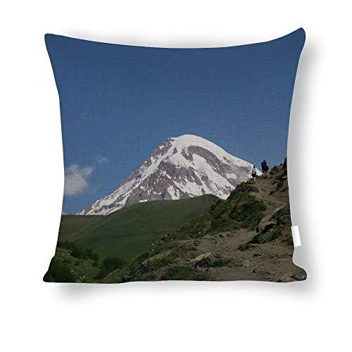 Diuangfoong Georgia Printed Pillowcase Cotton Linen Throw Pillow Cover Standard Size 20x20 Inch