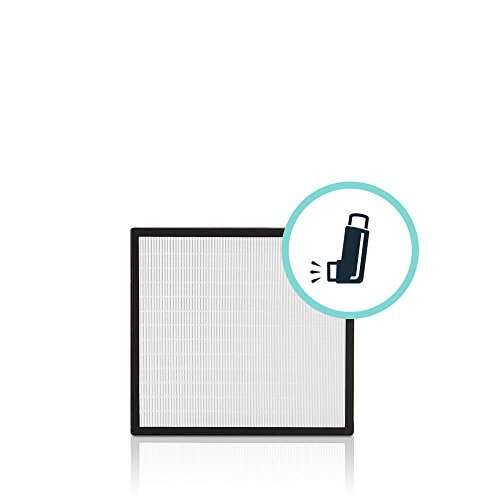 Alen BreatheSmart Fit50 HEPA-Silver Replacement Filter