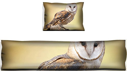 MSD Mouse Wrist Rest and Keyboard Pad Set, 2pc Wrist Support IMAGE ID 27944160 A barn owl perched on a dead tree stump Barn Owls are silent predator