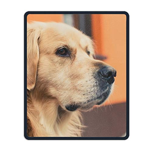 Golden Retriever Adult Dog Customized Non-Slip Rubber Mousepad Gaming Office Mouse Pad - Golden Retriever Stein
