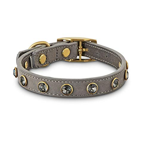 Bond & Co. Jeweled Gray Suede Dog Collar, X-Small/Small