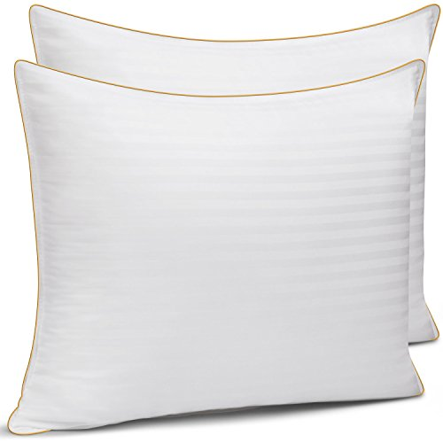 Queen Size Bed Pillows for Sleeping - 20x30, 2-Pack - Mid Loft - Soft Fiber Fill - Hypoallergenic - Stripe Cotton Covers - Best Alternative to Feather and Down Bedding - Fit Standard Pillow Cases (Gold Foam Mattress Care)