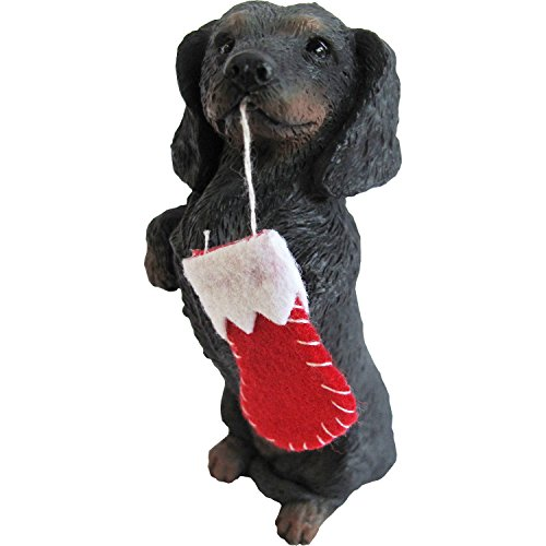 - Sandicast Black Dachshund with Red Stocking Christmas Ornament