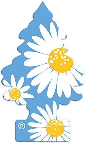 Little Trees Daisy Fields Air Freshener (Pack of ()