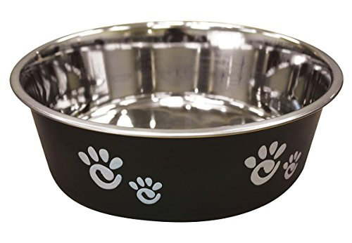 Ethical Pet Barcelona Matte and Stainless Steel Pet Dish, 64-Ounce, Licorice ()