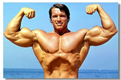 Arnold Schwarzenegger Movie Silk Wall Poster Mr Olympia Bodybuilding Terminator Big Prints Boy Room (029) - 24x36 inches