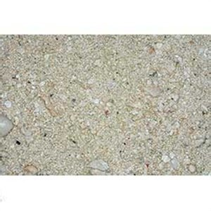 CaribSea Aquatics Ocean Direct Sand, 40-Pound, Oolite