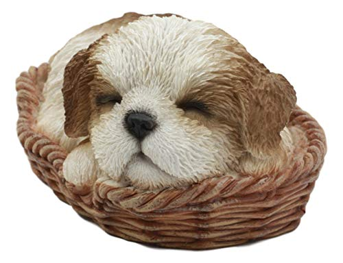 Ebros Adorable Lifelike Shih Tzu Sleeping in Wicker Basket Statue 6.5