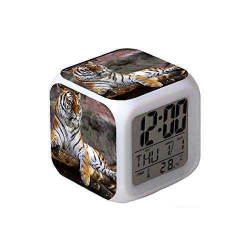 7Colors LED Changing Digital Alarm Clock Desk Thermometer Night Glowing Cube LCD Clock Home Decor Tiger Sitting on Brown Logs Closeup Photography