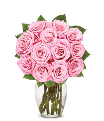 Amazon flowers one dozen light pink roses free vase flowers one dozen light pink roses free vase included mightylinksfo
