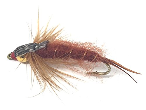 Feeder Creek Fly Fishing Trout Flies - Bead Head STONEFLY Brown - One Dozen Wet Flies - 3 Size Assortment 10,12,14 (4 of Each Size)